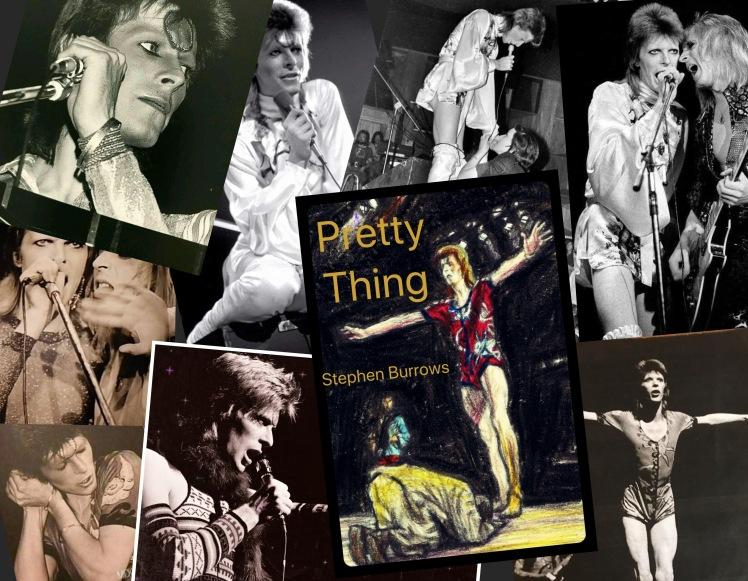 Ziggy collage 1